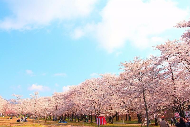 【臨時休館のお知らせ】4/12〜5/20