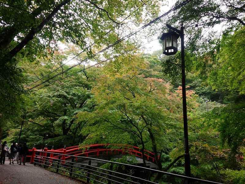 「10月17日 『河鹿橋』周辺の様子」