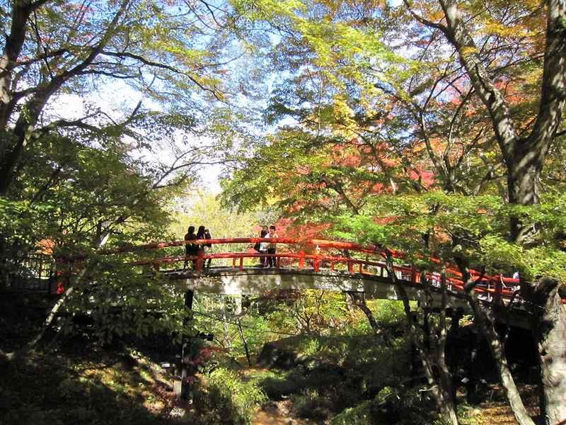 10月30日 湯元『河鹿橋』周辺の様子